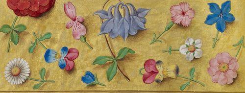 gwen-flowers.jpg